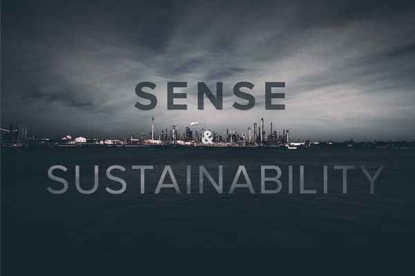 Sense and sustainability header